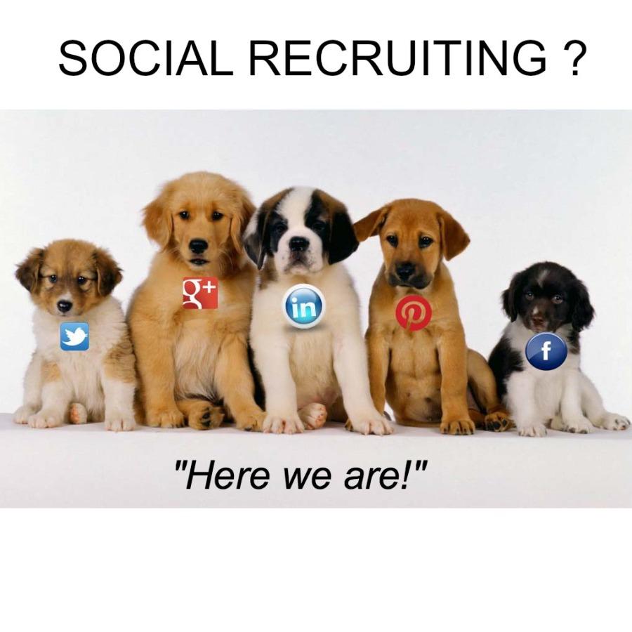social cani1